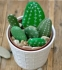 Step by Step Crafts with Louise: Cactus Painted Stones: A Prickly Affair: All Ages